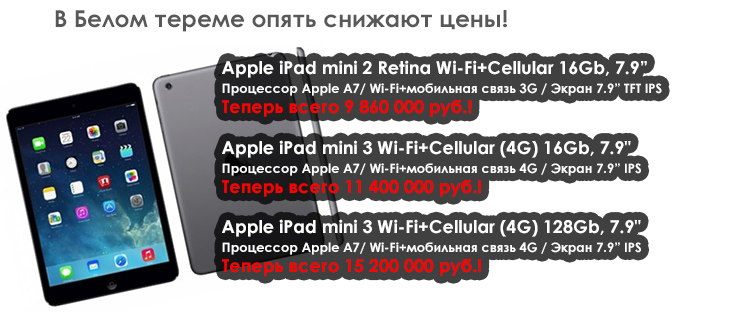 apple-ipad-mini2-retina